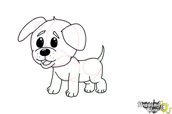 How to Draw a Baby Dog - Step 10