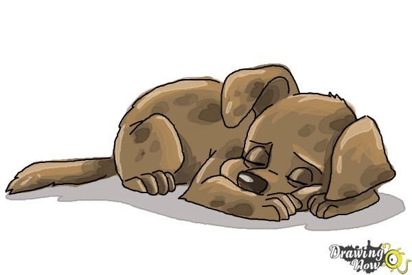 How to Draw a Sleeping Dog - Step 9