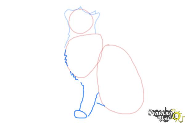 How to Draw a Cat Profile - Step 4