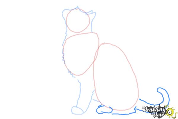 How To Draw A Cat Profile Drawingnow