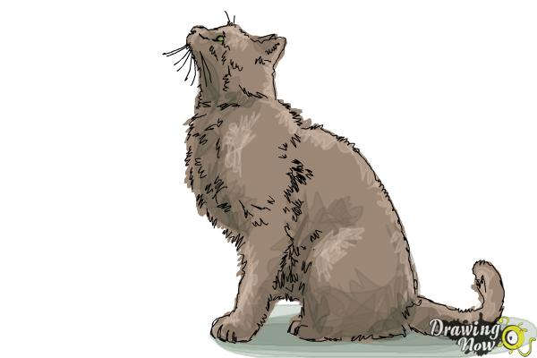 How to Draw a Cat Profile - Step 9
