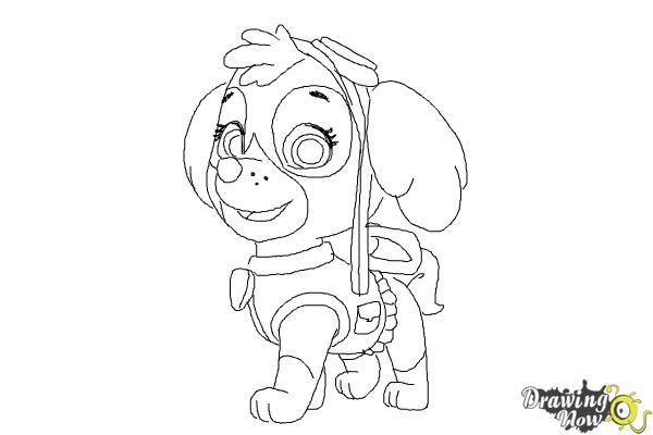 Exceptional How To Draw Skye From PAW Patrol   Step 10