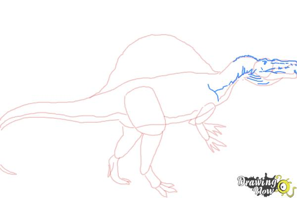 How To Draw A Spinosaurus Drawingnow