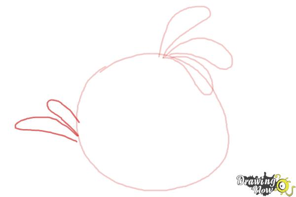 How to Draw Angry Bird Stella, Pink Bird - Step 4