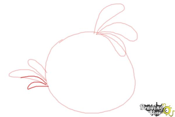 How to Draw Angry Bird Stella, Pink Bird - Step 5