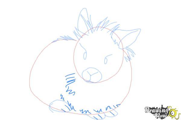How to Draw a Lionhead Bunny - Step 6