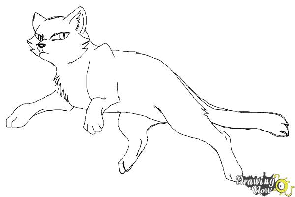 How to Draw Bluestar from Warrior Cats - Step 8
