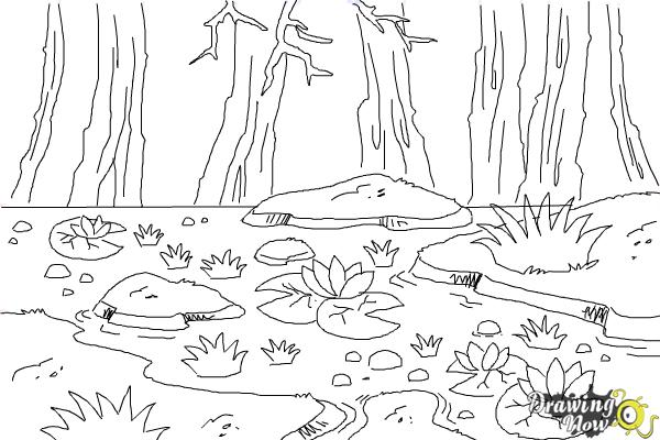 How to Draw a Swamp - Step 8