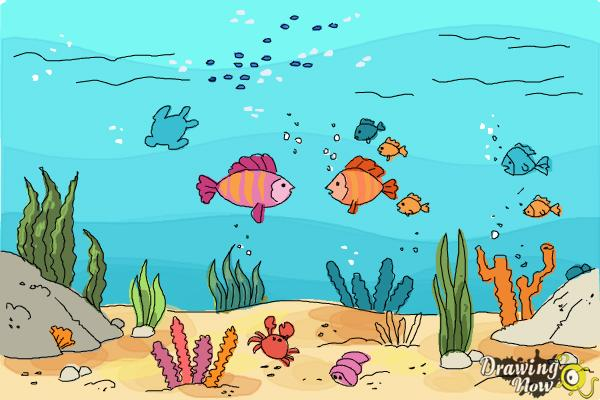 How to Draw an Underwater Scenehow to Draw an Underwater Scene - Step 10