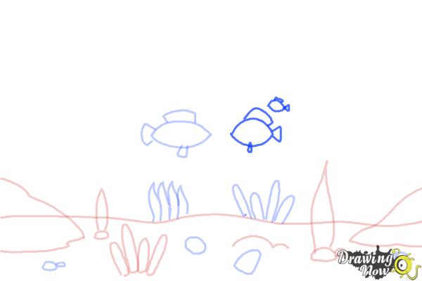 How to Draw an Underwater Scenehow to Draw an Underwater Scene - Step 5