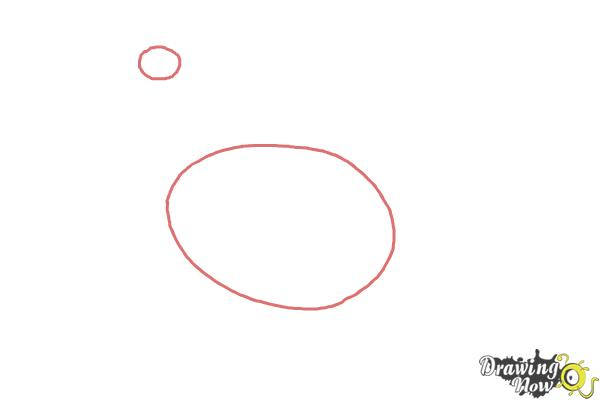 How to Draw a White Leghorn Chicken - Step 1