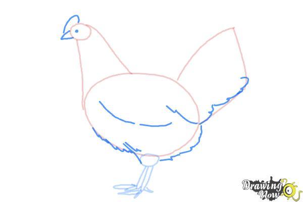 How to Draw a White Leghorn Chicken - Step 5