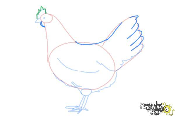 How to Draw a White Leghorn Chicken - Step 6