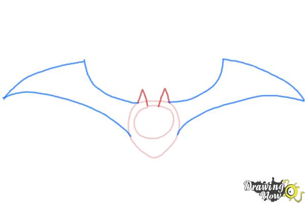 How to Draw a Halloween Bat - Step 3