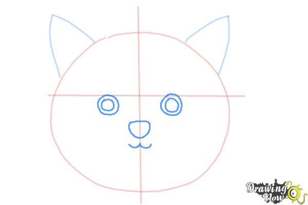 How to Draw a Cat Face - DrawingNow