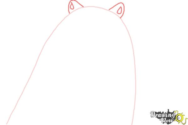 How to Draw Corporal from The Penguins Of Madagascar - Step 2