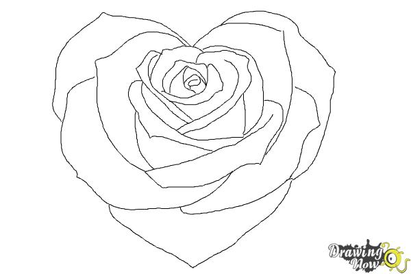 How to Draw a Heart Rose - DrawingNow