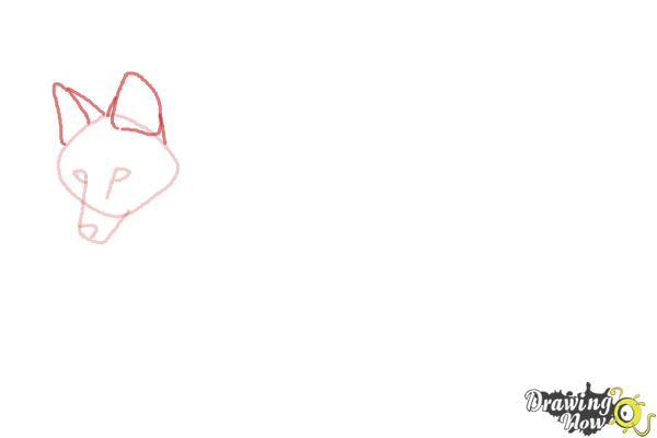 How to Draw a Wolf - Maned Wolf - Step 3
