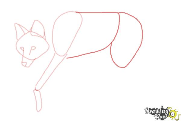 How to Draw a Wolf - Maned Wolf - Step 5