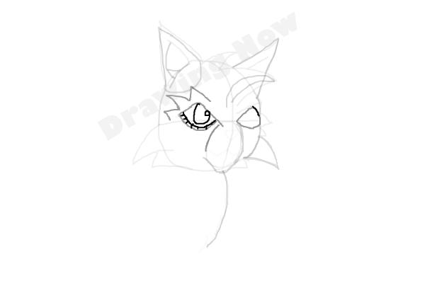 warrior cats coloring pages bluestar energy | How to Draw Graystripe from Warrior Cats - DrawingNow