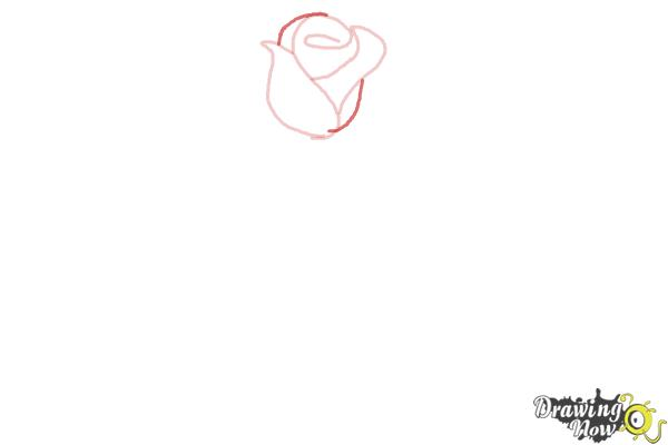 How to Draw a Rose Step by Step for Beginners - Step 3