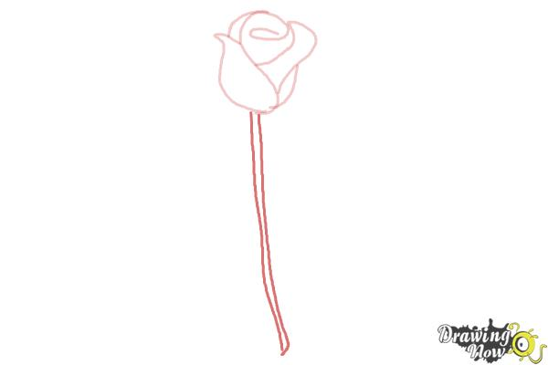 How to Draw a Rose Step by Step for Beginners - Step 4
