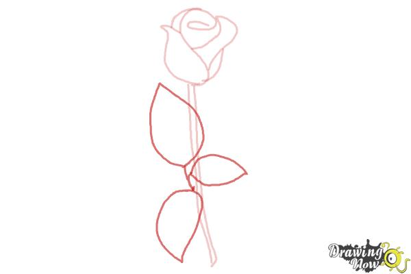 How to draw a rose step by step for beginners step 5