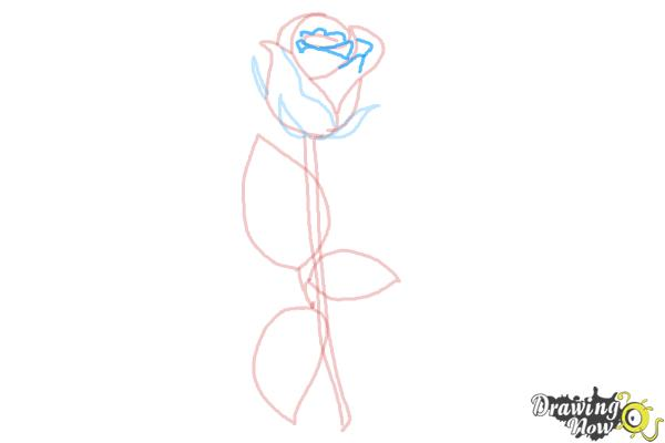 How to Draw a Rose Step by Step for Beginners - Step 7