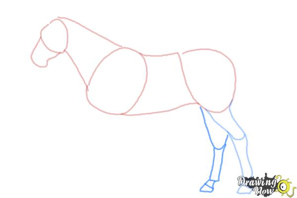 How to Draw a Realistic Horse - Step 5