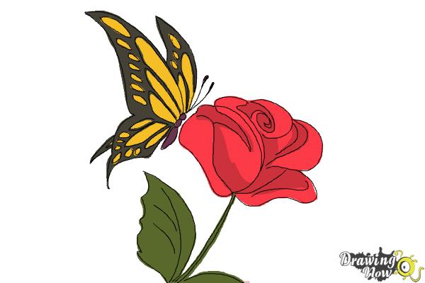 Butterfly on a rose drawing for How to draw the flower of life step by step
