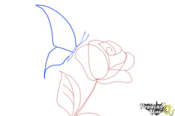 How To Draw A Butterfly On A Flower Drawingnow