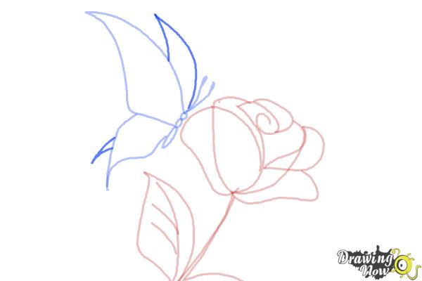 How to Draw a Butterfly On a Flower - Step 7