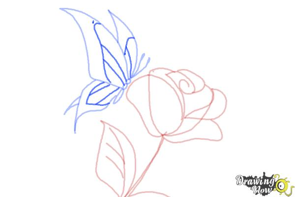 How to Draw a Butterfly On a Flower - Step 8