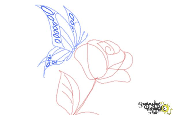 How to Draw a Butterfly On a Flower - Step 9