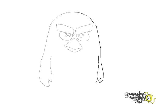 How to Draw Red from The Angry Birds Movie - Step 5