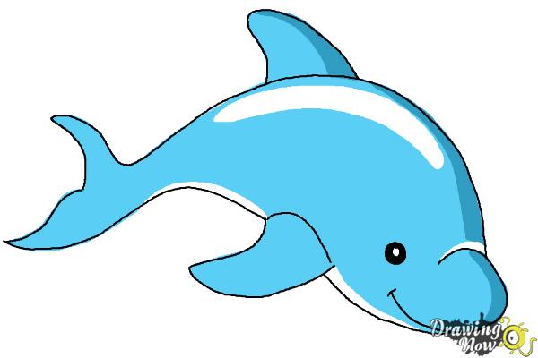 How to Draw a Dolphin - Step 7
