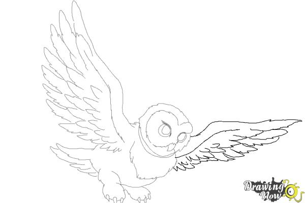 How to Draw Hedwig from Harry Potter - Step 10
