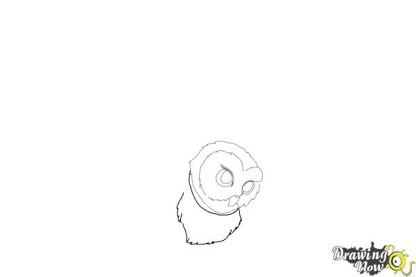 How to Draw Hedwig from Harry Potter - Step 4
