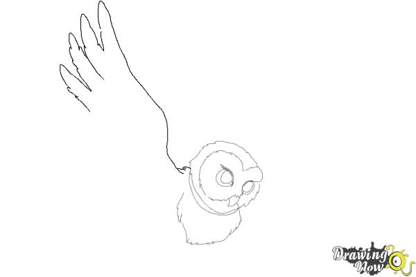 How to Draw Hedwig from Harry Potter - Step 5