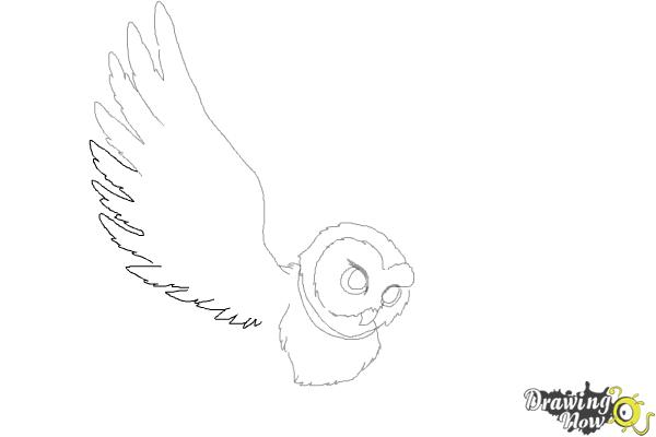 How to Draw Hedwig from Harry Potter - Step 6