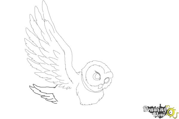 How to Draw Hedwig from Harry Potter - Step 8