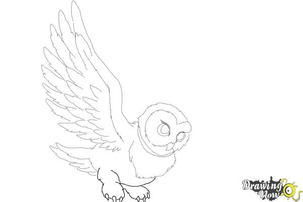 How to Draw Hedwig from Harry Potter - Step 9