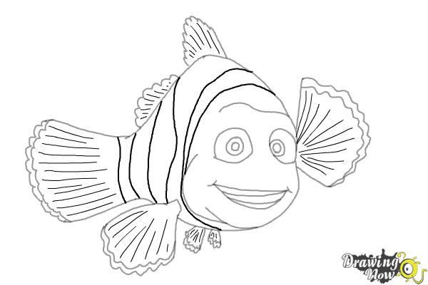 How to Draw Marlin from Finding Dory - Step 9