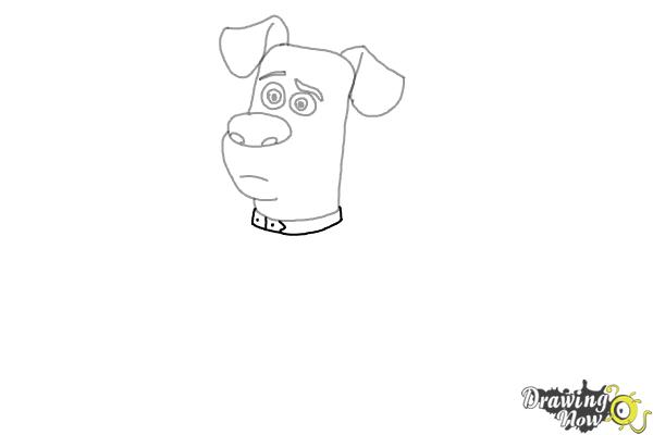 How to Draw Max from The Secret of Pets - Step 5