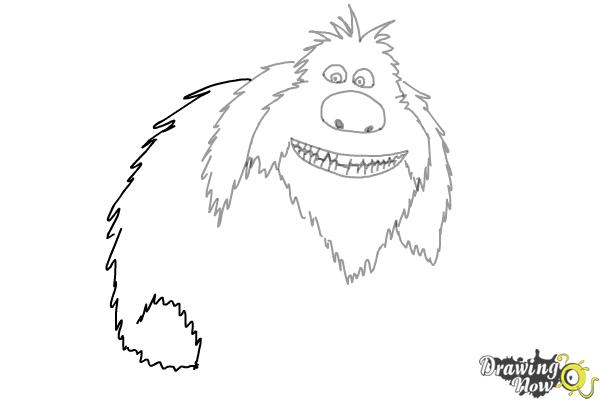 How to Draw Duke from The Secret of Pets - Step 7