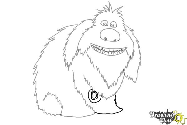 secret life of pets coloring pages - how to draw duke from the secret of pets drawingnow