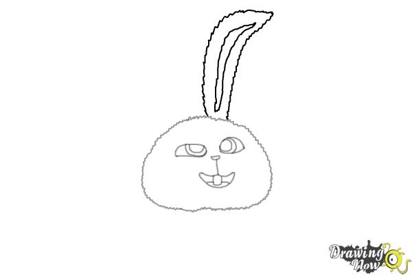 How to Draw Snowball from The Secret of Pets - Step 5