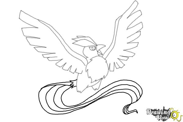 how to draw articuno from pokemon step 8