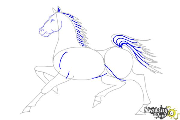 How to Draw a Horse (Ver 2) - Step 10