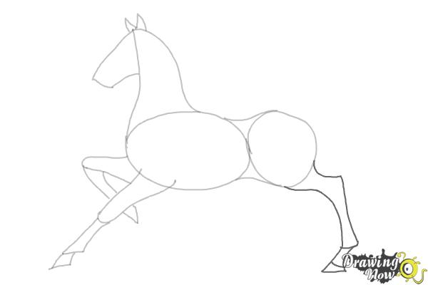 How to Draw a Horse (Ver 2) - Step 6